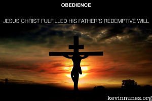 Obedience for usimage by: kevinnunez.org
